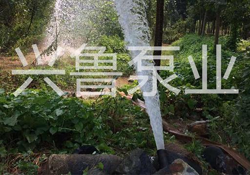 淄博博山水泵